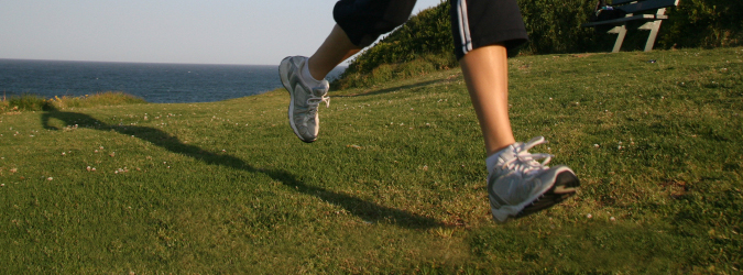 Injury Rehabilitation & Supporting Therapies